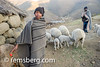 Young boy and a man with their sheep in their village in Lesotho, Africa (Remsberg Photos) Tags: world africa travel winter usa mountains wool outdoors village child sheep wanderlust adventure hut lambs agriculture livestock youngman lesotho thatchroof domesticanimal stonematerial world|africa