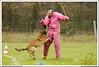 First Von King Von Backdraft RINALDI V  -0867 (Fab Photos Canine et Sportive) Tags: king von first backdraft