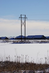 Hecla Winter (Let Ideas Compete) Tags: winter lake tower frozen pond colorado reservoir pole powerlines co louisville powerline poles hecla heclalake heclareservoir