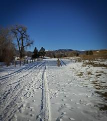 cameraphone snow fence colorado fences smartphone... (Photo: CAJC: in the Rockies on Flickr)