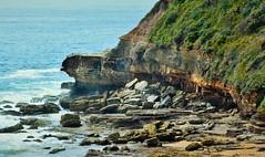 Warriewood-Turimetta Point_1a (Jeremy Denham) Tags: cliff beach point landscape rocks headland warriewood