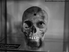skull-kiss-goodbye-P1000902 (Cardinal Guzman) Tags: selfportrait skull kiss goodbye nokisses 3minutes