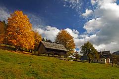 Strugarje02 (Vid Pogacnik) Tags: austria karavanke karawanken mountains outdoor landscape hiking autumn foliage farm mountain alps