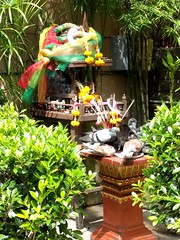 Bangkok spirit house with pigeons 1 (ashabot) Tags: pigeons birds bangkok spirithouse bird color colorful streetscenes shrines streetshrines streetlife street shot