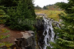 00159340 (wolfgangkaehler) Tags: 2016 northamerica northamerican usa unitedstates unitedstatesofamerica washingtonstate mtrainier mtrainierwa mountrainier mountrainierwa nationalpark mtrainiernationalpark paradise paradisemtrainier myrtlefalls waterfall