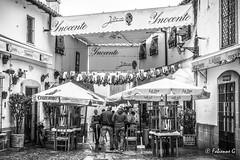 Bar Juanito (Fabienne G) Tags: blackandwhite blackwhite noiretblanc noirblanc bw nb street rain pluie rue bar restaurant andalousie spain dragan