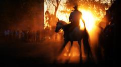 Sombras (Eduardo Amorim) Tags: gacho gachos gaucho gauchos cavalos caballos horses chevaux cavalli pferde caballo horse cheval cavallo pferd crioulo criollo crioulos criollos cavalocrioulo cavaloscrioulos caballocriollo caballoscriollos pampa campanha uruguaiana riograndedosul brsil brasil sudamrica sdamerika suramrica amricadosul southamerica amriquedusud americameridionale amricadelsur americadelsud cavalo         hst hest hevonen  brazil eduardoamorim