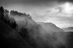 Bromo, Indonesia (pas le matin) Tags: bw mono blackandwhite monochrome mountain landscape outdoor cloud cloudy serene nb sky ciel nuages brume mist fog brouillard noiretblanc trees arbres indonesia indonsie travel asia voyage asie southeastasia world canon 7d canon7d canoneos7d bromo volcano volcan