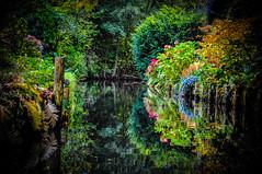 Flower Canel of Spreewald (Subyello) Tags: dariuszszewczak germany spreewald canal flowers lightroom nikond90 presets river rzeka water