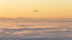 Starlings parachute (Galep Iccar) Tags: storni starlings paracadute parachute nature natura landscape sunset tramonto paesaggio paesaggi