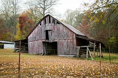 Old Barn - Dillard, Ga. (DT's Photo Site) Tags: barn vintage farm rabun georgia vanishing landscape country roads fall foliage south pasture