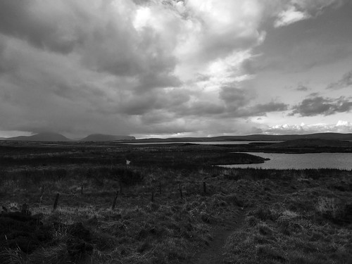 ORKNEY IMG_2157