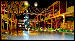 Kirkby scenes (exacta2a) Tags: kirkby knowsley xmas decorations
