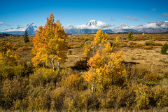 Grand Teton National Park (nebulous 1) Tags: grandtetonnationalpark grandtetonnp gtnp wyoming landscape nature autumn clouds trees grass nikon nebulous1 glene