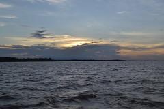 Rio Amazonas, Brasil (Proflázaro) Tags: amazônia pará natureza entardecer rios rioamazonas céu naturezadobrasil nikond3100 brasil ecologia