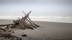 Beach Lego (Annatville) Tags: winter shells beach sand canterbury driftwood raining spencerpark