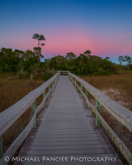 Mahoghany Hammock at Dusk (Michael Pancier Photography) Tags: us unitedstates florida everglades evergladesnationalpark americathebeautiful travelphotography commercialphotography naturephotographer editorialphotography michaelpancierphotography landscapephotographer fineartphotographer michaelapancier americasnationalparks wwwmichaelpancierphotographycom