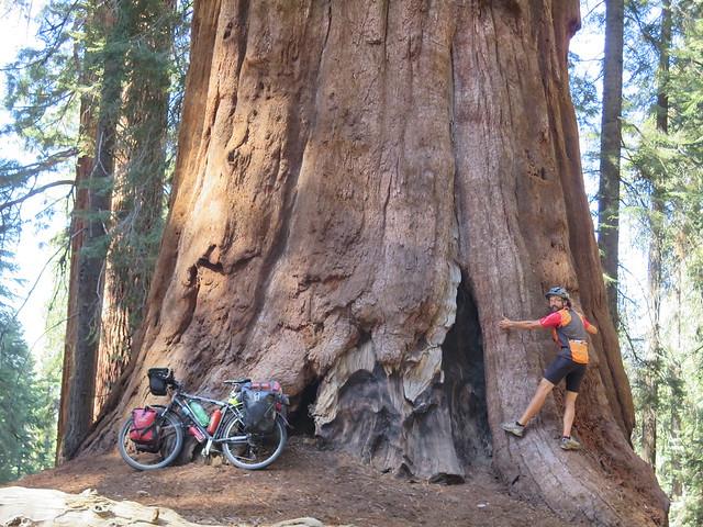 imagen de Rodamundos-Vuelta al mundo en bici: USA