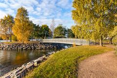 Helsinki (Tuomo Lindfors) Tags: bridge water suomi finland helsinki tervasaari vesi silta colorefexpro niksoftware viveza theacademytreealley