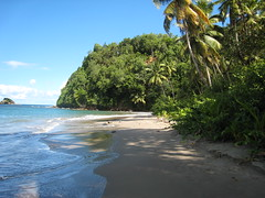 Dominica - East Coast Beach