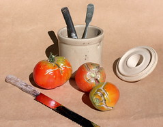 Fall Tomatoes (SDCoats) Tags: stilllife sunlight tomatoes stitched nikone995 microsoftice