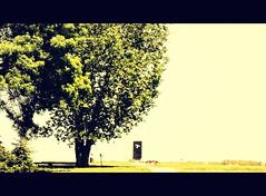 """""""Navik on ivi ki zgine poteno"""" - Vukovar (Bambola 2012) Tags: monument war massacre croatia horror massgrave vukovar ovara"""