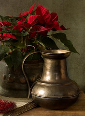 Still Life with Poinsettia and Jug (suzanne~) Tags: christmas red stilllife flower texture gold golden poinsettia indoor jug brass tabletop