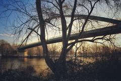 Arthur Von Weinberg Steg... (hobbit68) Tags: old bridge sunset sky clouds canon river wasser outdoor alt frankfurt main herbst himmel wolken fluss sonne blätter baum sonnenschein brücken