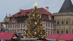 Prague Christmas Tree (C0dyCZ) Tags: christmas old tree square town prague market prag praha praga weinachten marche trhy nmst vnoce staromstsk