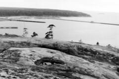 56.M.02.13 Porkkala palautuksen jlkeen (JuhaUK) Tags: navy 1956 porkkala neuvostoliitto merivoimat upinniemi obbns laivasto vuokraalue
