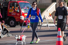 Phoenix Undy Run (raptoralex) Tags: arizona dog pet phoenix animal panties underwear walk run undies underpants undy coloncancer undyrun