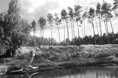 * (elisachris) Tags: blackandwhite animal landscape dinosaur natur landschaft brandenburg ricohgr tier dinosaurier urzeit schwarzweis primevaltimes