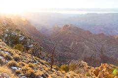 Desert View, Grand Canyon (dmitry.antipov) Tags: arizona 6d 241054lis