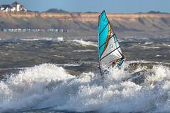 PC311426-Edit (Brian Wadie Photographer) Tags: gulls oystercatcher windsurfing kiting em1 goodlight 14xtc avonbeach canon70300lis hemgistburyhead
