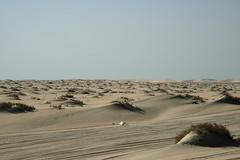 qatar deserto (54) (Parto Domani) Tags: trekking desert arabic east ash desierto oriente middle peninsula medio wste qatar deserto arabica dsert penisola   escursione  shaqra wste dsert