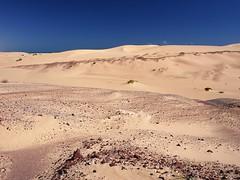 On the way from Shannah to Al Ashkharah (Ondrej V.) Tags: nature landscape sand desert outdoor dune middleeast arabia oman shannah alashkharah