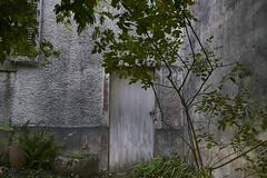 (thierrylothon) Tags: architecture auray bretagne c1pro captureonepro closeup fe35mmf28za flickr fluxapple lumire morbihan nature phaseone publication sony sonya7rm2 sonyzeissfe35mmf28za france fr