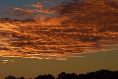 Sky on fire (Wild Bill in MN) Tags: orange sunset silhouette sony a77m2 sal70400g