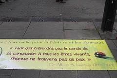 Manifestation antichasse - Nantes - 24/09/2016 (La plante d'abord) Tags: nantes animaux chasse antichasse manifestation braconnage cologie biodiversit protestation meurtre barbarie collectifdu21septembre chasseur tueur imposteur