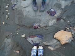 Purple Rocks on the Diane Gabriel Trail (jenesizzle) Tags: makoshika makoshikasp makoshikastatepark glendive badlands landscape hiking outdoors roadtrip montana statepark montanastatepark