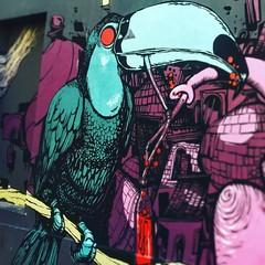 The drinking #toucan by #monsieurhobz #hobz et #retro #retrograffitism #ortopark #137  #streetart #graffiti #graff #spray #bombing #wall (pourphilippemartin) Tags: toucan monsieurhobz hobz retro retrograffitism ortopark 137 streetart graffiti graff spray bombing wall