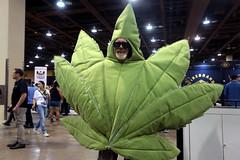 Marijuana cosplayer (Gage Skidmore) Tags: southwest cannabis conference expo phoenix convention center 2016 2nd annual marijuana prop 205 activist activism