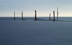 posts in water (yury shulhevich) Tags: longexposure filters sea posts birds silhouette fishing morning sunrise bluesea silkywater landscape netherlands edam ys2016