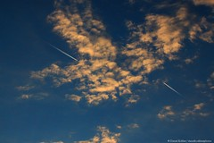 Meeting (danielkoehlersphotos) Tags: meeting treffen sky airplanes clouds colors sunset red blue himmel flugzeug outdoor airplane danielkoehlersphotos sonnenuntergang gloaming