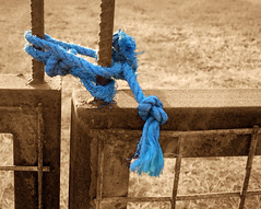 To lock a gate (VillaRhapsody) Tags: fence gate rope blue sepia selective selectivecoloring rural field kayaköy