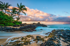 Tranquility - Maui, Hawaii (Tactile Photo | Greg Mitchell Photography) Tags: fineart sand landscape art palm south peace hawaii pink pastel blue calm makena beach maui tree color secretbeach cloud motion movement palmtree kihei wallart sunrise white