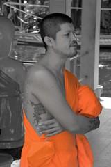 Monk with Tatoo, Bangkok (Manoo Mistry) Tags: bangkok thailand nikond5500body nikon tamron18270mmzoom monk selectivecolour robe tatoo black white saffron cape