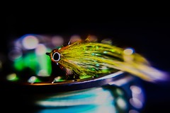 Flatwing on reel (Brant He. Fageraas) Tags: flyfishingart flyfishing streamer macro canon colors shallowdof dof artpic