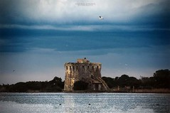 Torre di Buranaccio - Maremma (swaily ◘ Claudio Parente) Tags: maremma maremmans toscana capalbio tuscany d300 nikon swaily claudioparente
