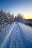 Empty snow covered road in winter landscape (czdistagon.com) Tags: winter nature woods snow road forest tree landscape cold white outdoor frost ice scene freeze season snowy rural scenery day scenic weather path travel park natural light frosty sky blue snowfall country seasonal way track morning newyear czdistagoncom distagon matveevaleksandr czdistagon aleksandrmatveev